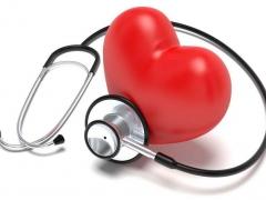 生命的幫浦-心血管系統